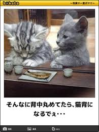 images (20)